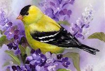 Painted birds
