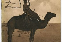 <3 Camels / http://monmarocguide.com