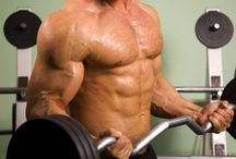 HGH  / Find out more about HGH supplements