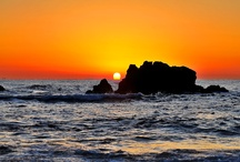 Sunrise . Sunset / by PaulsRarePoultry.com