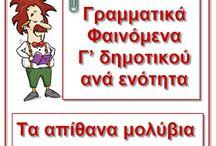 SCHOOL -  Γ ΤΑΞΗ