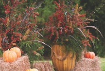 Fall Decorations / by Jean Garden