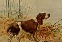 Maud Alice Earl / Dogpaintings