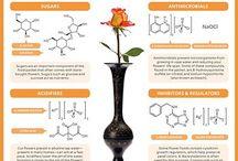 Chemistry of...