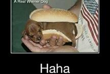 Funny.:)