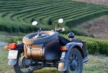World's tea plantations