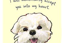 Puppy Love / Things for Bella & Bailey / by Jennifer Holl