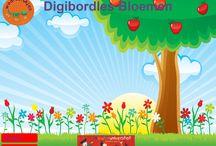Digibordlessen