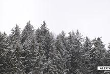 Black Forest / Imágenes tomadas en la Selva Negra (Alemania) con un iPhone 6S