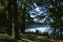 Lacey Keosauqua State Park / One of Iowa's largest parks with 1653 acres including modern & primitive camping sites, cabins, Lodge rental facilities, fishing, hiking, and more.