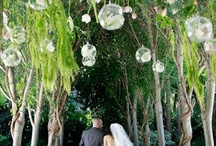 Real Client Weddings & Events / Favorite photos and details from our client weddings and events / by Modern LA Weddings