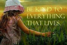 Kindness, Compassion, Joy, Love, Gratefull, Happiness, Courage, Peace, Hope and Gentleness.