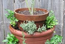 Jardinagem e arranjos