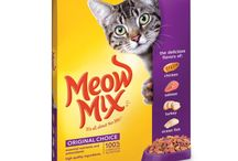 The Best Dry Cat Food / When choosing food for your cat, take a look at the ingredients list. Here are a few ways that you can find the best dry cat food for your cat.  Read our reviews here: https://www.munch.zone/how-to-find-the-best-dry-cat-food/  ----------  Disclosure:  The Munch Zone is a participant in the Amazon Services LLC Associates Program, an affiliate advertising program designed to provide a means for sites to earn advertising fees by advertising and linking to amazon.com.