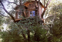 .Dream Home