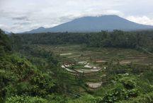 #Bali#Balvilla#Balirental#baliholiday#travelasia#baliaccomodation#baliisland#baliadvisor#travelbug#villabaliarrangements