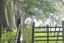 Pastures, country, farmland / by Nancy Kroeker Boothe