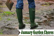 Monthy Garden Chores / Garden chores broken down by month. / by Mavis Butterfield