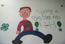 4-H POSTER IDEAS / Any ideas that helps for 4-H. / by Heather Galloway Grimes