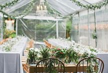 Greenhouse Ideas / by Jill Esterline