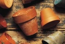A - Terra Cotta Pots / by Betsy Pedersen
