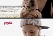 BigBang ♥ G-Dragon