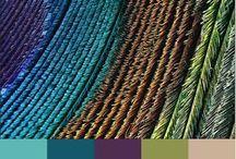 Color schemes / by Lauren Emily
