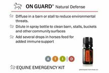 Equine Essential Oils / Essential oils are used for a wide range of equine emotions and physical wellness applications. They can be used a single oil at a time or in complex blends in one of three methods;  diffused aromatically, applied topically, or taken internally as dietary supplements