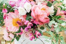 WIND RIVER STYLED SHOOT-BRIGHT & SUMMERY