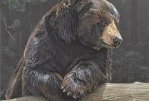 dipinti animali