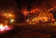 Camping / by Andrea Blankenship