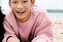 Chen/Jongdae / His Voice is Gold he's a Dinosaur