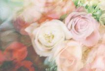 pretty & prettier / by Gabi Anderson