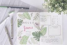 •Bullet Journal Inspirations•