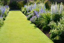 Gras | Gazon | Weide
