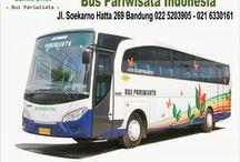 Bus Pariwisata Indonesia