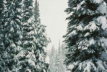 Inverno Winter
