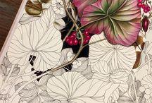 Floribunda / The Flower Year