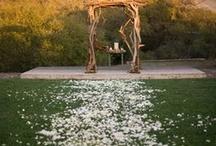 wedding wishes/dreams / by Traci Foor