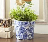 Planters/Vases / by Scarlett Shumate