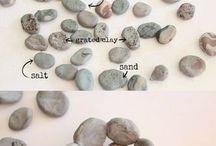 Piedras y Plantas