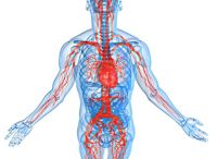 Vascularcme