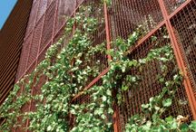 wire netting wall_architecture