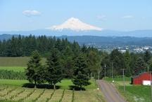 Sherwood, Oregon / Places in Sherwood Oregon