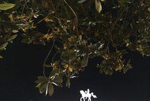 Dia e noite, night and day, jour et nuit, día y noche. (Farlley Derze). / Fotos diurnas e noturnas nas cidades. Proposta de Farlley Derze. Day and night photos in cities. Proposal for Farlley Derze. Jour et nuit photos dans le villes. Proposition de Farlley Derze. Fotos día y noche en las ciudades. Propuesta Farlley Derze. farlleyderze@gmail.com