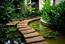 Outdoor spaces / by Laura Taylor
