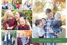 Holiday Minis •Portfolio / www.AllisonShumate.com