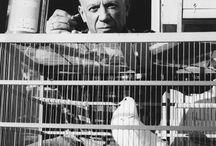 Lucien Clergue, Picasso