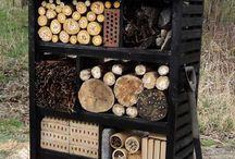insecten uitnodigen - inviting insects [inspiratie]