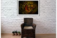 Art - Floral - Display / Contemporary Art - Dar Wolfe - Holistic series Unique, original art and photography. Fine art prints printed on high quality paper, in certified limited editions. Modern organic, floral, urban, astral, holistic, jazzy and enigmaic motifs. Original art graffiti and quote posters suitable for interior design of your home, office or business. Buy directly from artist.